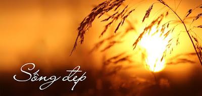 Những bài thơ hay sống đẹp, hãy trân quý và yêu thương nhau