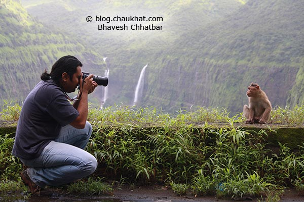 Bhavesh doing photography of wild macaque monkeys of the Western Ghats at Varandha Ghat