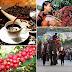 Tổ chức Ngày hội Cà phê Việt Nam để quảng bá sản phẩm thương hiệu năm 2016...
