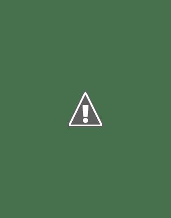 ikea ribba cornice bianco nero betulla marrone quercia bianco lasiert rosso 18x24 cm ebay. Black Bedroom Furniture Sets. Home Design Ideas