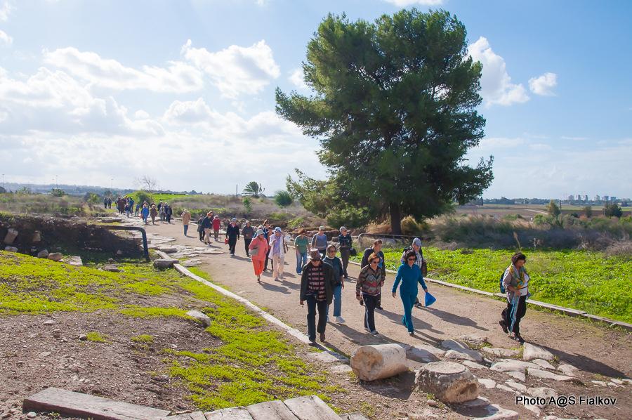 Римская улица Кардо в Антипатрисе. Экскурсия по реке Яркон в Тель Авиве и Яффо. Гид в Израиле Светлана Фиалкова.