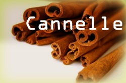 cannelle.jpg