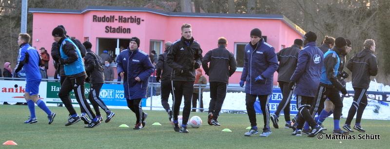 15. Spieltag TSG Neustrelitz - Hertha BSC II - Seite 2 DSC_0038