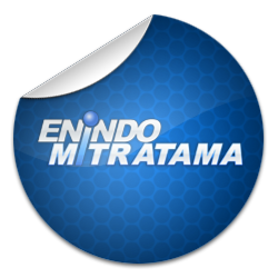 Enindo Miratama | 20 perusahaan IT di Bandung | 41studio