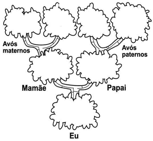 Suficiente EDUCANDO COM O CORAÇÃO: A família de Joaquim - Árvore genealógica CL13