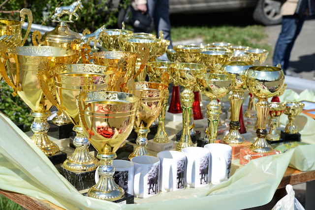 Кубок Аризоны-14(ПК)+ЧРКФ, Красноярск, 27 апреля 2014 DSC_5369
