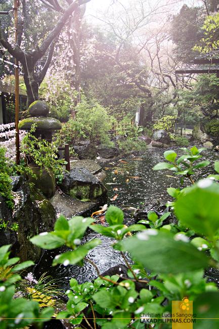 A Koi Pond in Atago Shrine in Tokyo