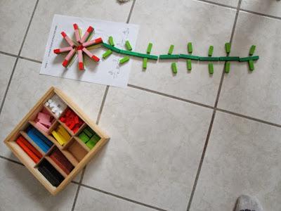 Reglettes Cuisenaires 3-6 ans : Fiche 1 La fleur