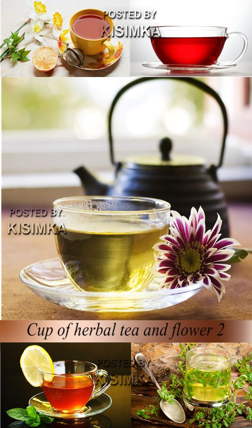 Stock Photo: Cup of herbal tea and flower 2