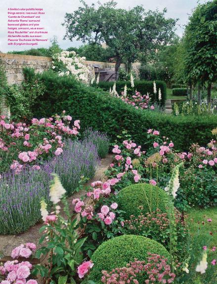 Splendid sass jinny blom landscape design in cotswolds for Garden design with roses