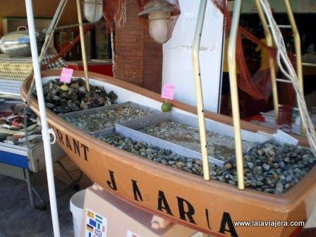 Restaurantes donde comer en la Isla de Tavira