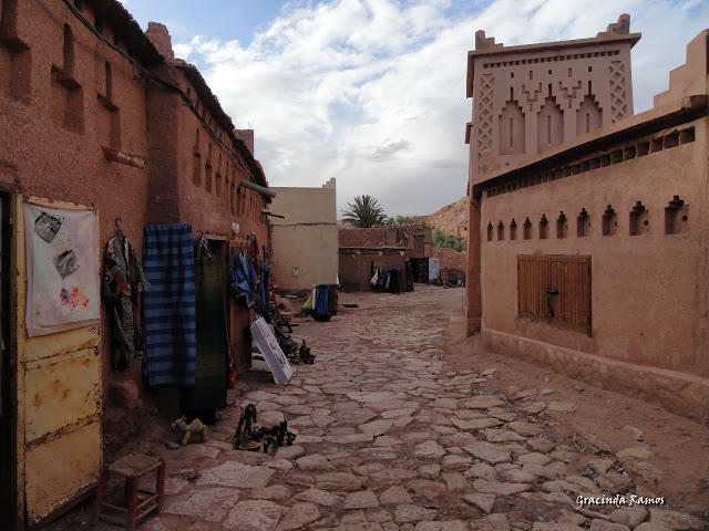 marrocos - Marrocos 2012 - O regresso! - Página 5 DSC05413