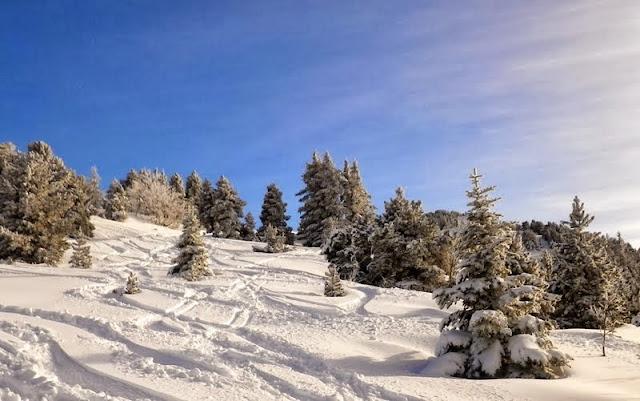 Pourquoi j'ai eu du mal à vendre mon snowboard... Ski_alpin_lans_0009w