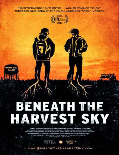 Beneath The Harvest Sky (2013) [Vose]