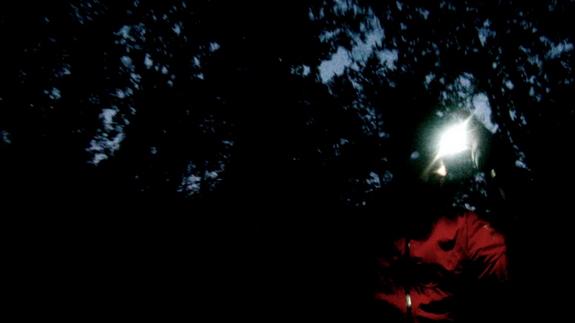 Frontale allumée dans le noir de la forêt