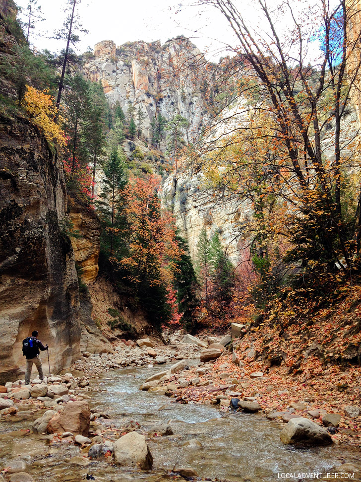 The Zion Narrows Hike.