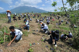Tree planting Guinness world record 2011, Tree planting Guinness world record Video, Philippines Tree planting picture, largest number of trees simultaneously planted, Tree planting world record, Camsur tree planting world record