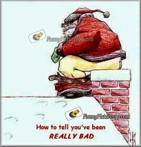 merry christmas funny pictures merry christmas funny humor pictures merry christmas funny pictures for facebook merry christmas funny pictures to your - Merry Christmas Funny