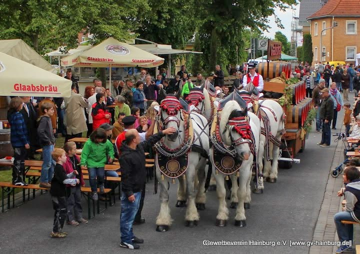 Glaabsbräu-Festgespann zur Eröffnung des Hainburger Marktes | Foto: Tobias Kemmerer