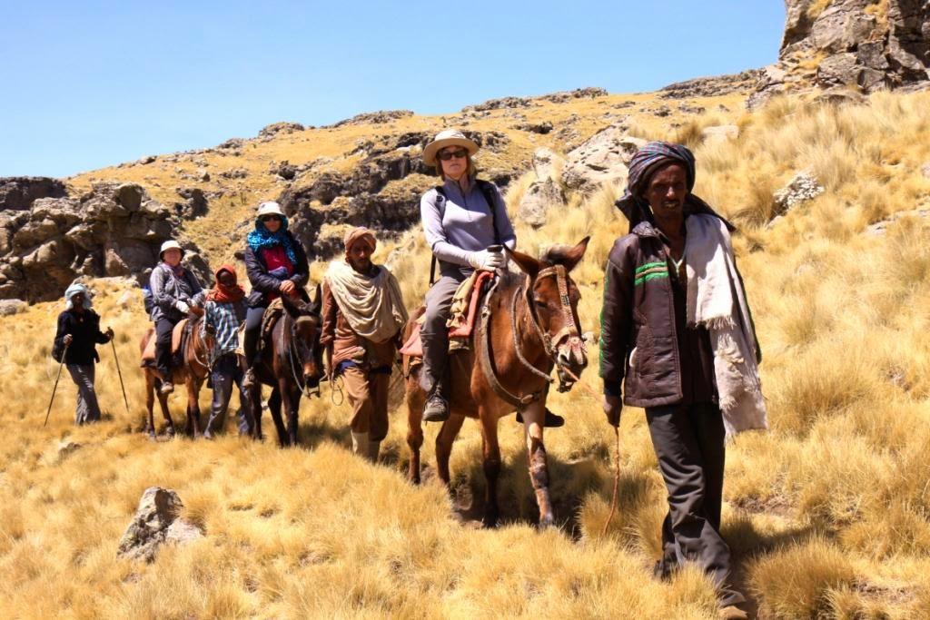 Kelione i Etiopija.Simieno kalnai.Autorius: Tomas Baltusis