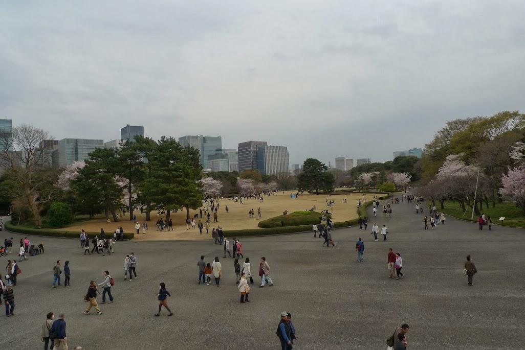 sakura palais impérial tokyo