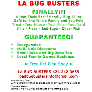 Who is bed bug busters bed bug busters?