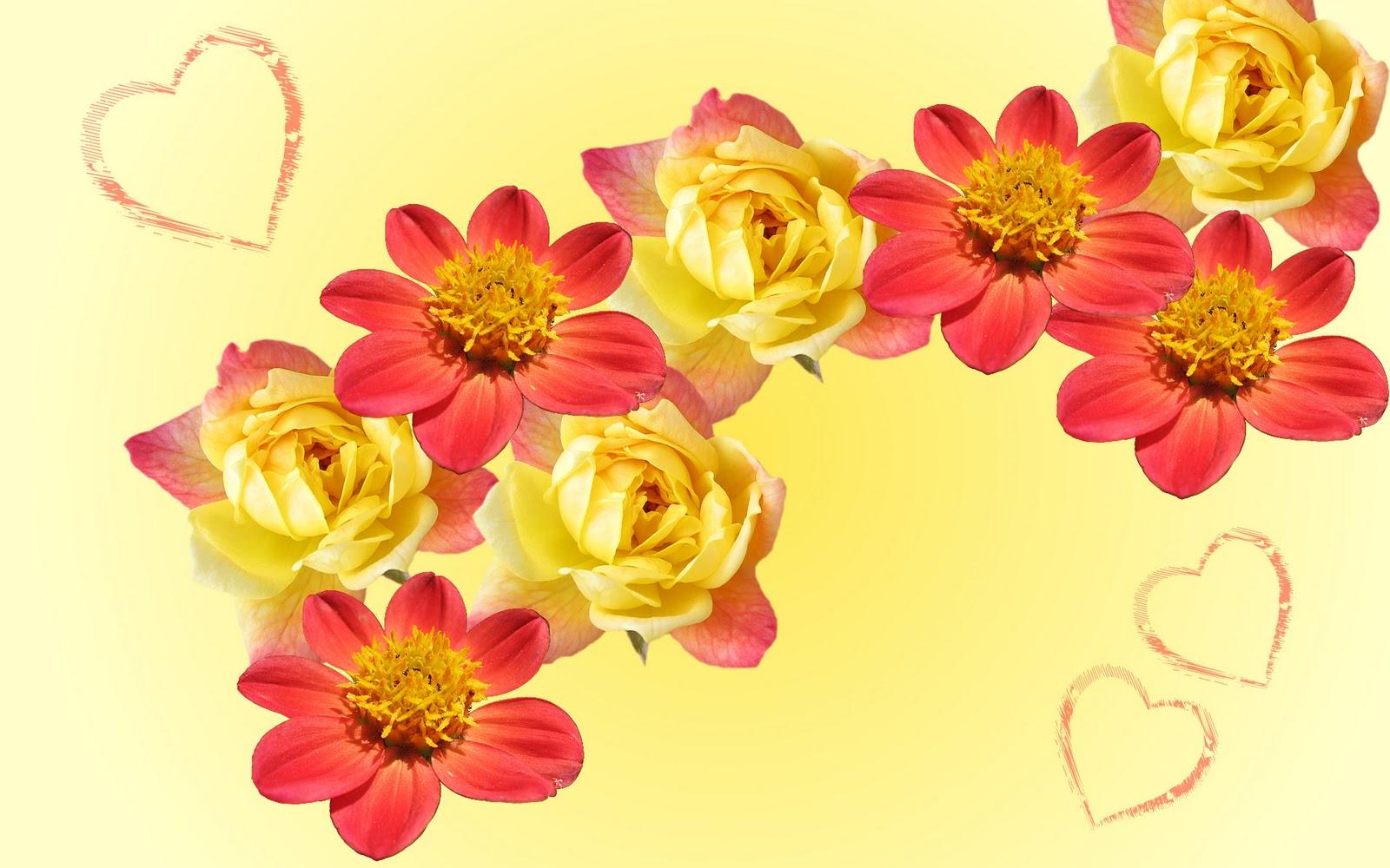 Planeta Wallpaper 5 Lindos papéis de parede de flores