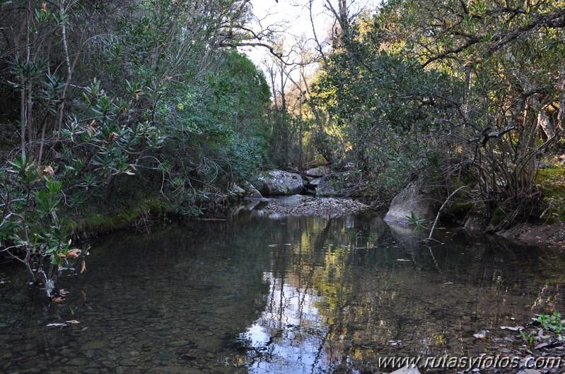 Laja Alta - Garganta de Gamero