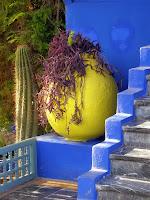 detajl iz vrtov Yves Saint Laurent