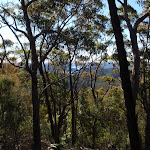 Glimpses through the trees on the Willunga track (156457)
