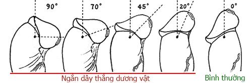 Ngan-day-thang-duong-vat