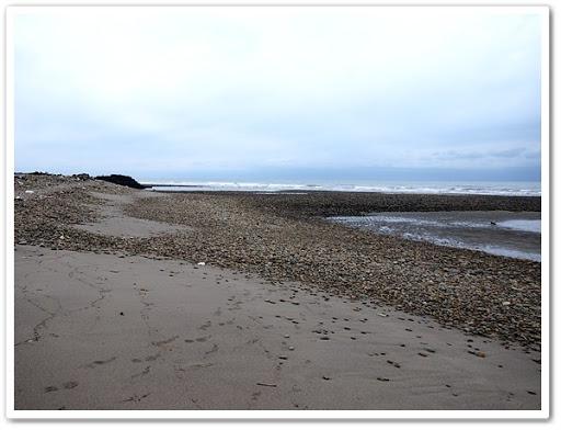 大安溪出海口的礫岸