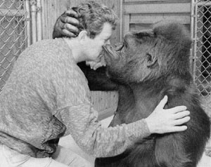 William Shatner and Koko the gorilla