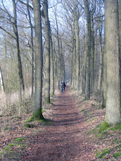 De Bossche 100, 100/110km( NL), 110 places: 25-26/ 01 / 2013 De%2BBossche%2B100%2B132