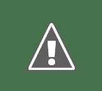 romanians and hungarians in transilvania%2523 Românii şi maghiarii din Transilvania