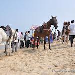 "Photo de la galerie ""Chennai, l"