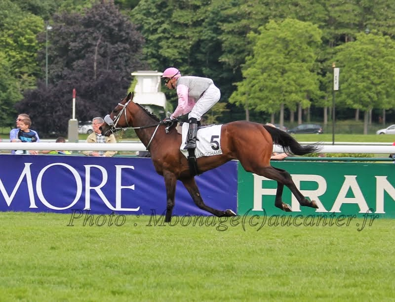 Photos Longchamp 25-05-2014 IMG_1446