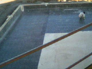 Azulejos alicatados y alicatadores colocaci n de for Colocar gresite piscina