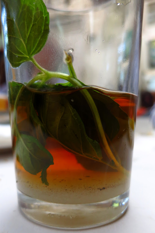 Hot tea with sugar and fresh mint