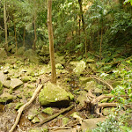 Large rocks at the base of the Gap Creek Falls in the Watagans (323819)