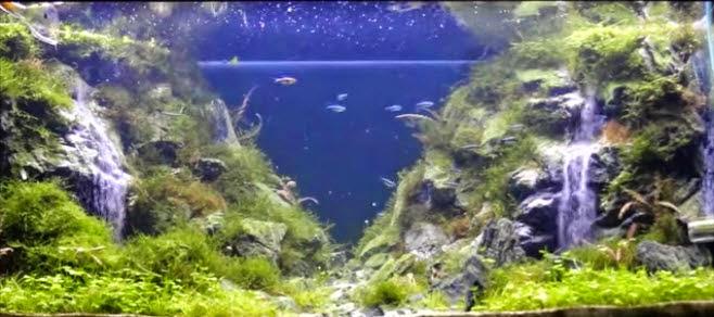 hồ thủy sinh suối thác 7 với 2 ngọn núi hùng vĩ