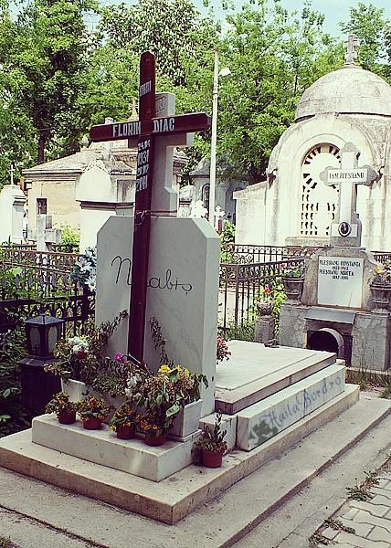 mormant nicolae labis cimitir bellu