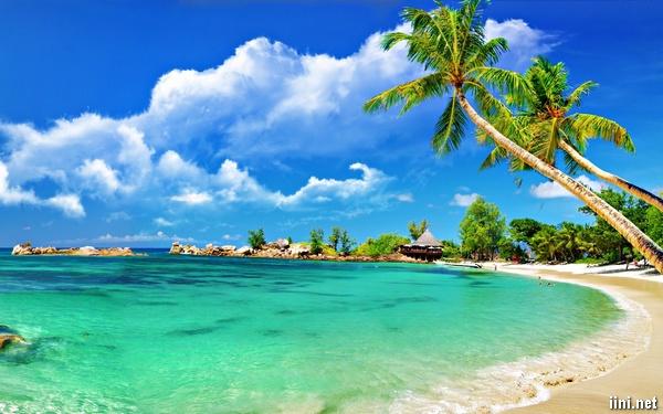 ảnh biển đẹp