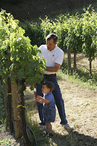 Vincent shows Paolo how to prune the vines. Photo Montemaggiore