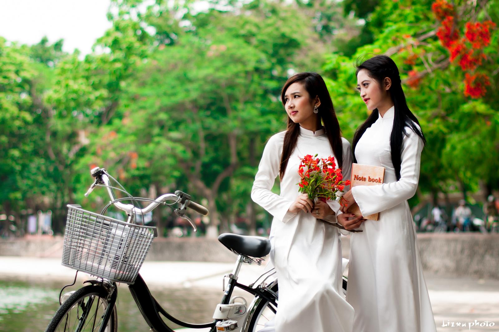 chiếc xe đạp bên hoa phượng