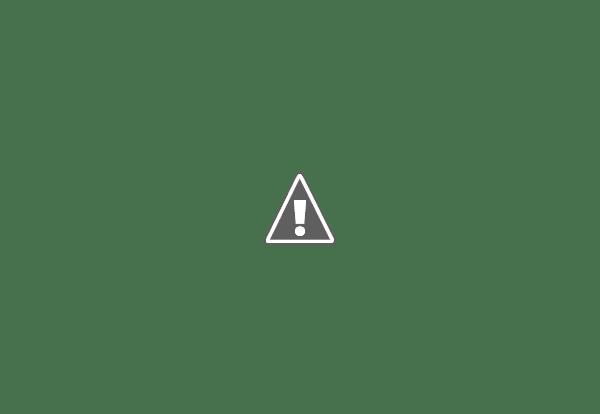 Camos rusos (en imágenes) 686_14