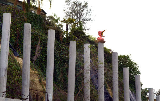 Pink bird over Eagle Rock