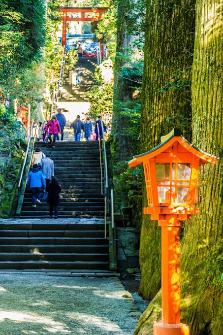 箱根神社 写真3