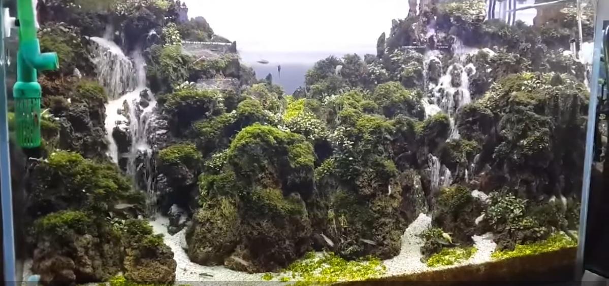 Hồ thủy sinh suối thác đôi của Aqua Jaya