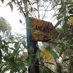 kangaroo point road (59213)